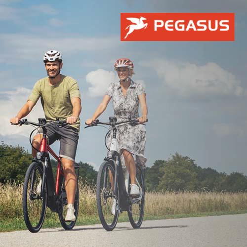 Pegasus Ebikes Sold By Virginia Beach Electric Bike Center